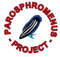 parosphr's Avatar